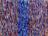 Buntgras mit Blau